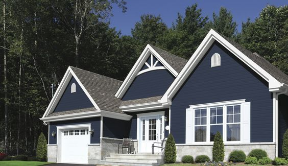 Dark Navy house